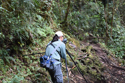 Nature Guides in Arenal