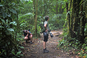 Photography trips in Costa Rica
