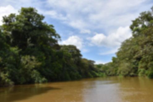 Caño Negro Tours Costa Rica