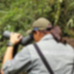 Costa Rica Nature Guide Arenal