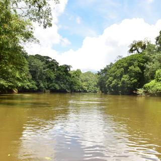 Sarapiqui Nature Expeditions