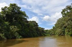Caño Negro refuge boat trip