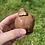 Thumbnail: Cadbury's Fudge Edible Cookie Dough Bites