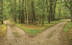 La separación consciente: mamá y papá ya no viven juntos