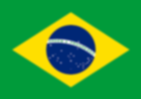 brasilian flag.png