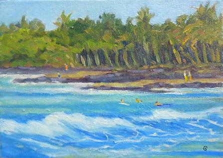 Hawaii-1193-KeauhouBayW.jpg