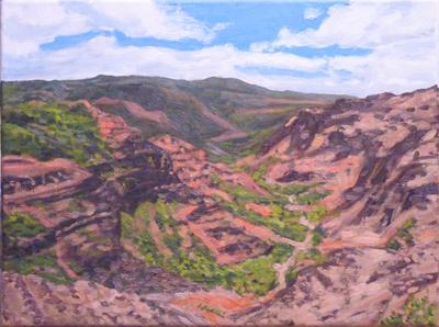 Kauai Canyon, 16x20, (#858)