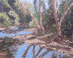 Wailua River, 16x20, (#857)