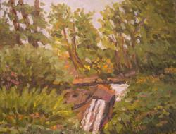 Northwest1165Bellevue_Gardens_WaterfallW