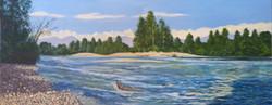 Northwest-601-Stillaguamish--River