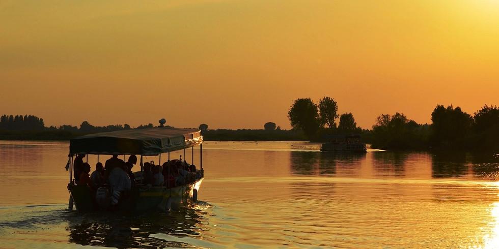 Giro in battello per ammirare la fioritura dei fiori di loto nei laghi di Mantova, con apericena al tramonto