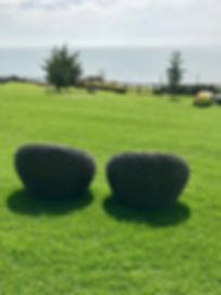 RoundChairs.jpg