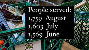 Some Dublin Food Pantry Service Statistics