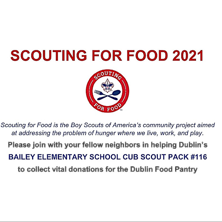 Bailey Elementary Troop 116 SCOUTING FOR FOOD