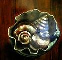 shells_in_bowl.jpg