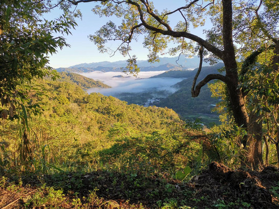 社區景觀1.jpg