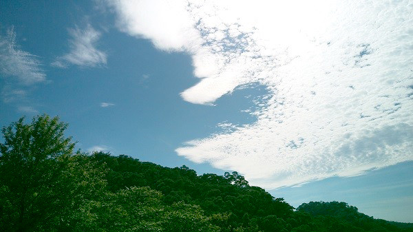 photo_160718152317_2.jpg
