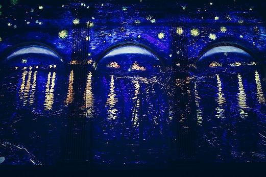 ליל כוכבים מתערוכת ואן גוך. צילום Ivanov
