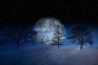 winter-2957050_1920.jpg