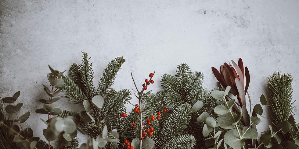 Christmas At Hope