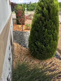 Bois décoratif Aulne et Frêne -Broyage Noeppel Romanswiller