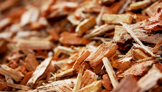 Paquette de bois