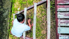 Pais e entidades reforçam relevância de escolas regulares na inclusão
