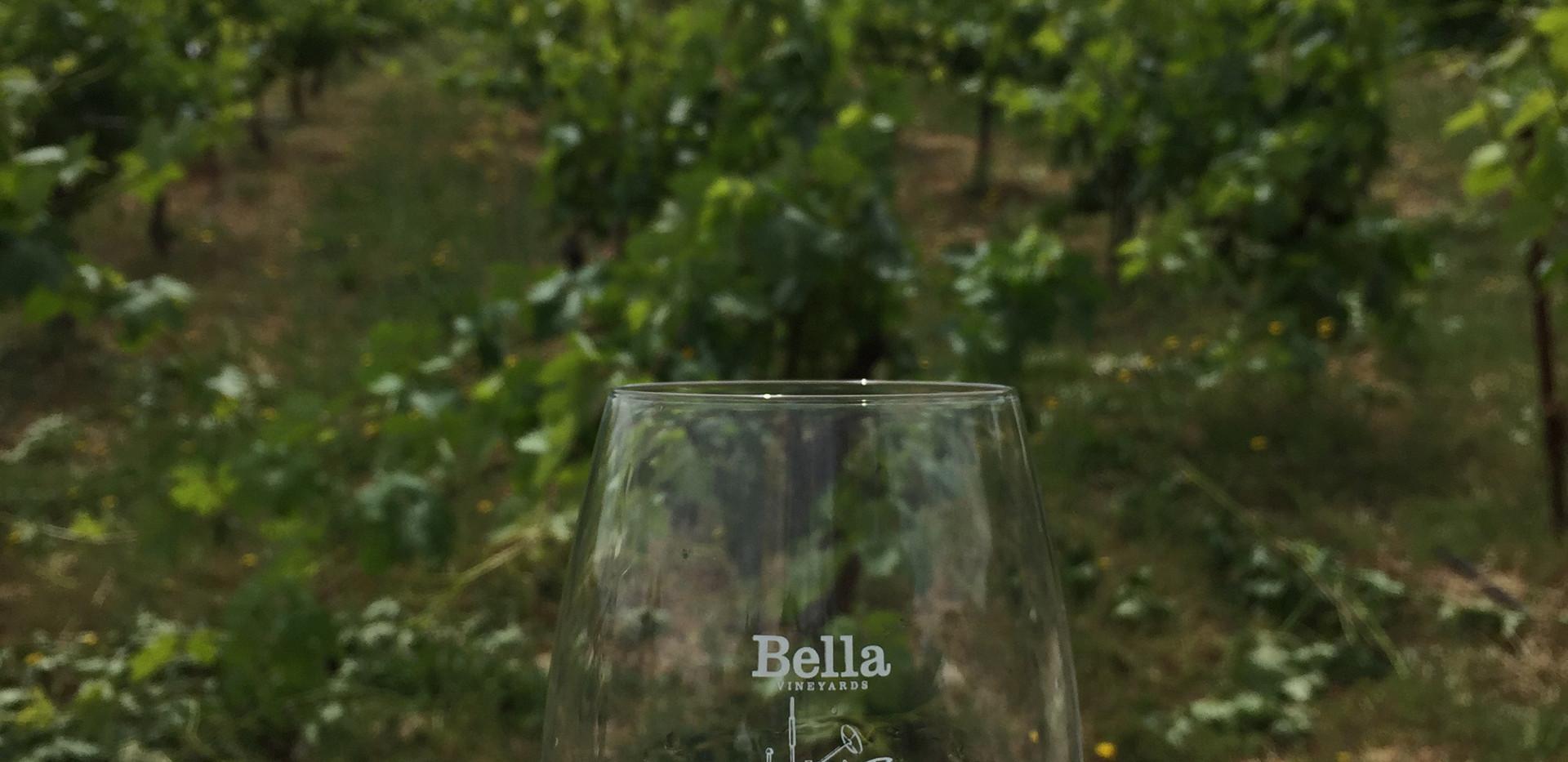 Bella ~ Healdsburg
