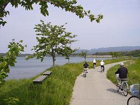 加茂湖周辺サイクリング レンタル自転車 加茂湖一周