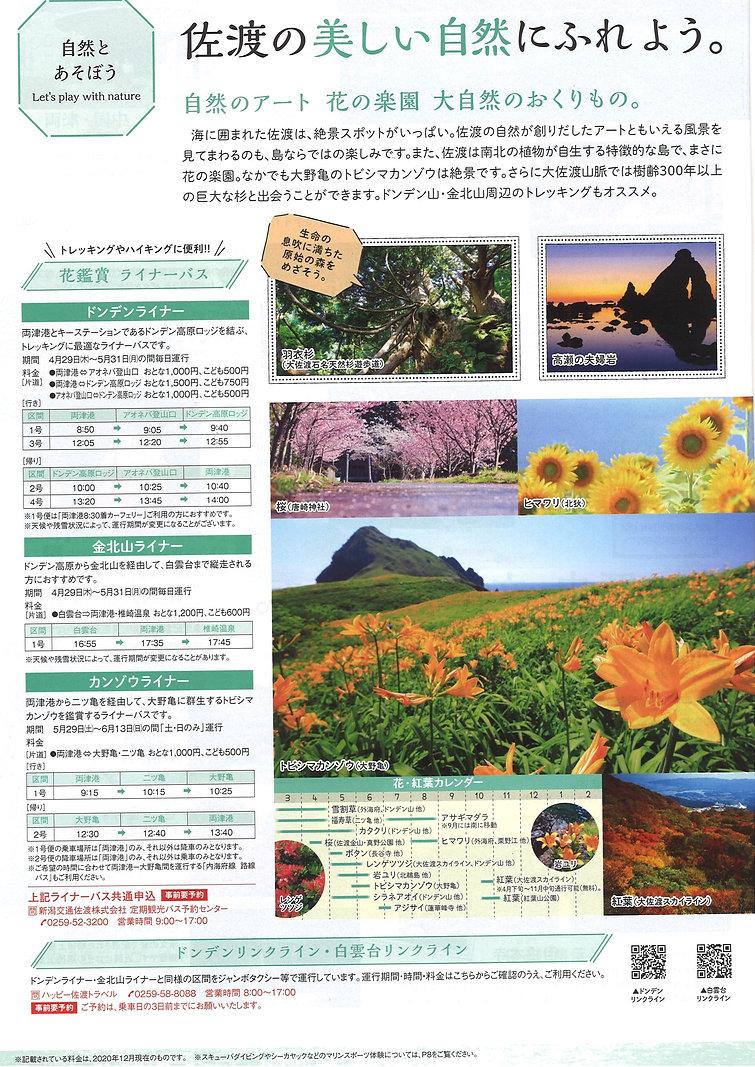 佐渡の花 ライナーバス2021 ドンデンライナー 金北山ライナー カンゾウライナー