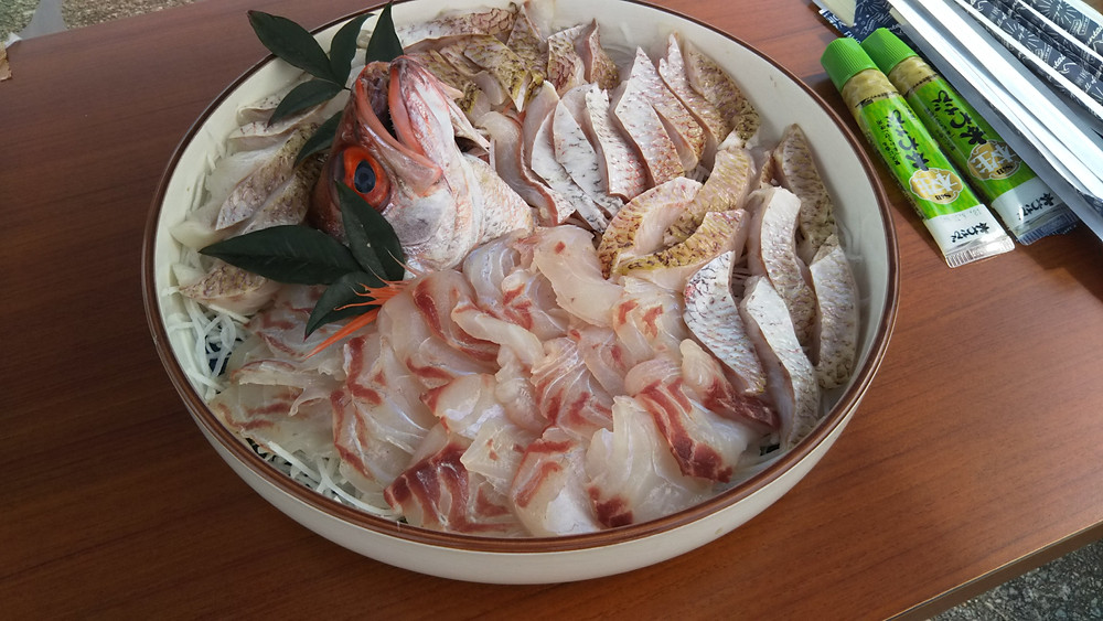 ノドグロ・鯛刺身 片野尾漁港