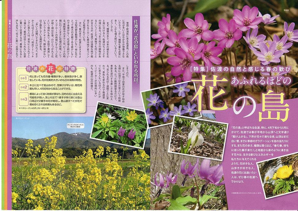 花の島 佐渡の山野草