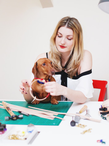 designer dog collars sixteen