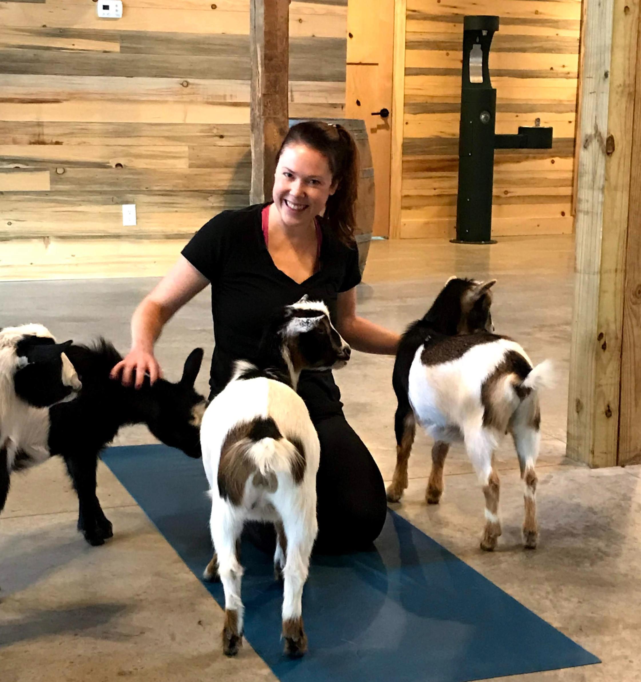Goat Yoga Experience