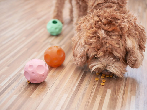 Hundespielzeug Mondball aus Naturkautschuk