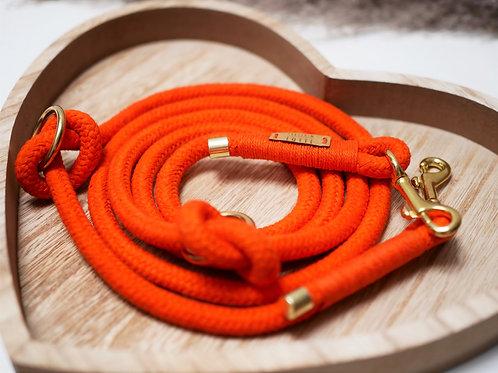 Tauleine Color - Orange