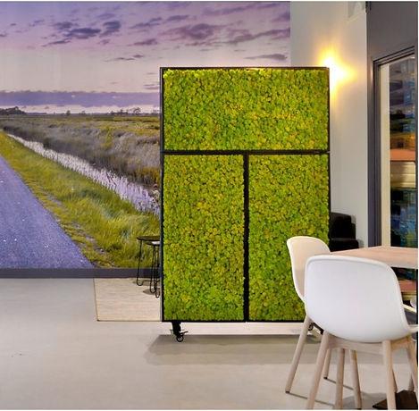BioMontage-Roomdivider, Moosraumteiler, Moos-Raumteiler