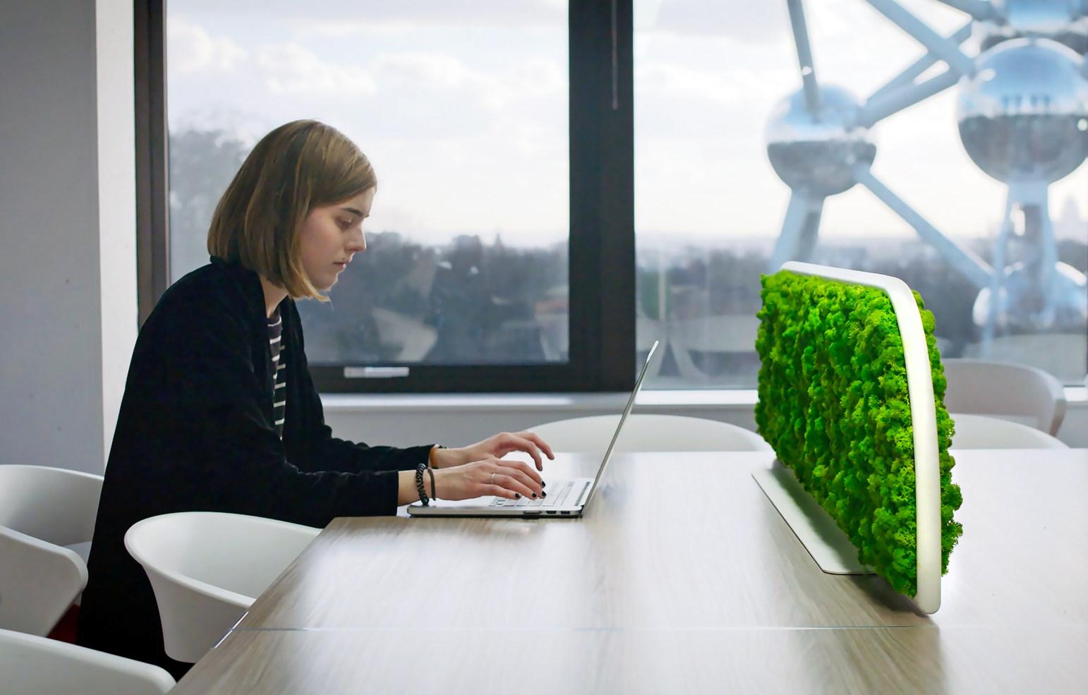 Desk Sichtschutz