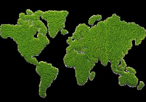 Weltkarte, Moosbild, Landkarte aus Moos, Islandmoos