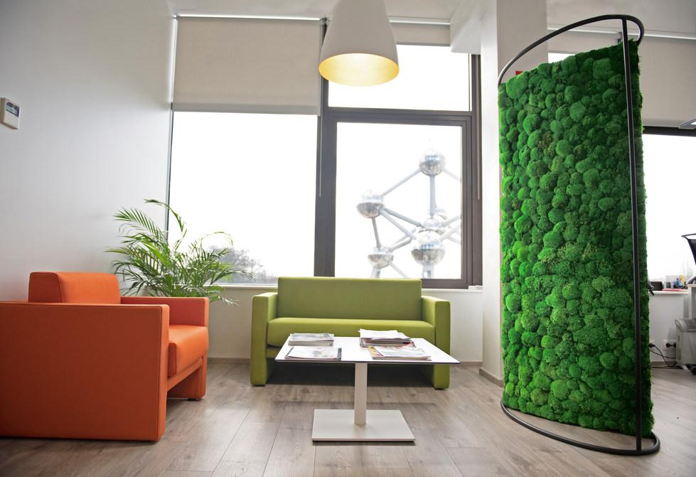 Ovaler Moos Raumteiler Sein eleganter Schwung ist ein Blickfang in jedem Büro. Neben einem hochwertigen Design punktet er mit seiner Hallreduktion. Einsetzbar zudem als Sichtschutz und als exklusives grünes Gestaltungsobjekt im Raum.