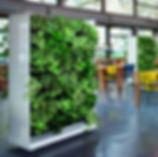 Baumhaus, Wandbegrünung, Moos, Baumhaus, NextGen Living Walls sind Pflanzwände aus Echtpflanzen. Vertikale Begrünung, Begrünte Wände, Living Green Walls, Raumbegrünung Pflanzenpflege, NextGen Living Wall bei BAUMHAUS, https://baumhaus.de, Wandbild, Living green, vertikale Begrünung, Nextgen Picture, NEXTGEN-Living-Wall-Room-Divider, NextGen Living Wall bei BAUMHAUS, https://baumhaus.de, Wandbild, Living green, vertikale Begrünung, Nextgen Picture