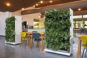 Baumhaus, Raumbegrünung NEXTGEN-Living-Wall-Room-Divider Raumteiler Raumtrenner