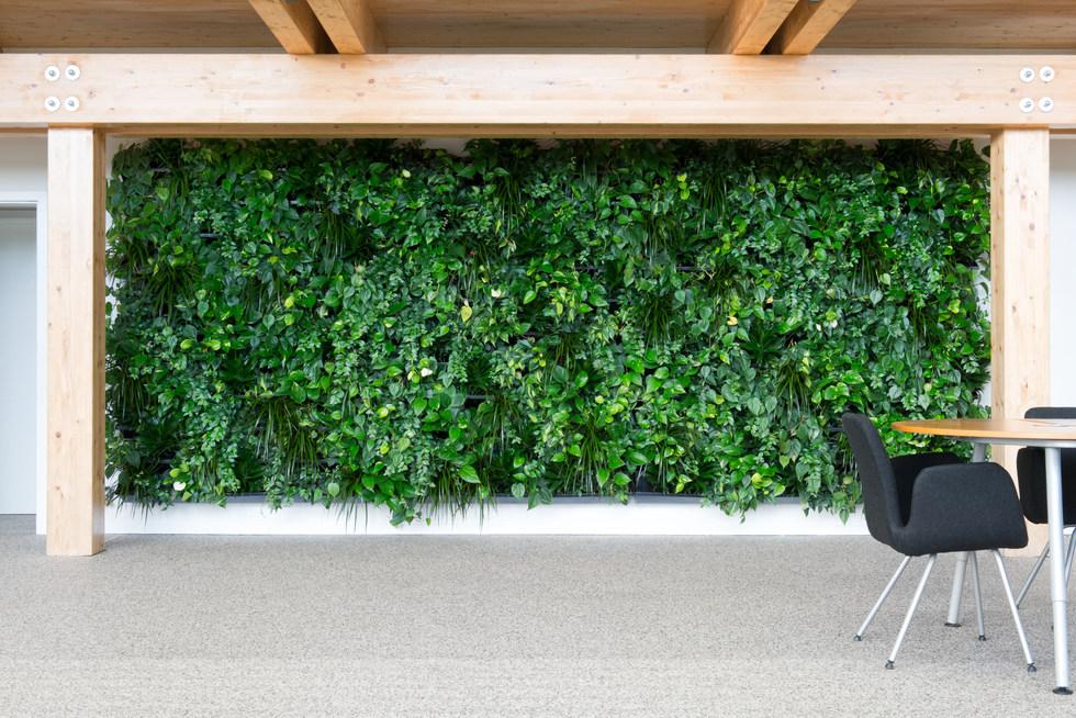 NextGen-Living-Wall Grüne Wände Wandbegrünung