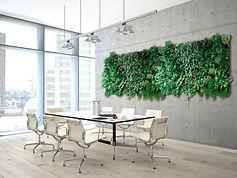 Wandbegrünung, Raumbegrünung, Grüne Wände, NEXTGEN-Living-Wall, begrünte Wände, verbesserte Raumluft, grüne Wände, living Walls, biophille Design, Wandbegrünung, Raumbegrünung