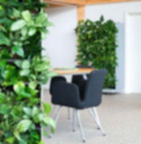 NextGen Raumteiler, NextGen Living Wall bei BAUMHAUS, https://baumhaus.de, Wandbild, Living green, vertikale Begrünung, Nextgen Picture, Baumhaus, Wandbegrünung, Moos, Baumhaus, NextGen Living Walls sind Pflanzwände aus Echtpflanzen. Vertikale Begrünung, Begrünte Wände, Living Green Walls, Raumbegrünung Pflanzenpflege, NextGen Living Wall bei BAUMHAUS, https://baumhaus.de, Wandbild, Living green, vertikale Begrünung, Nextgen Picture