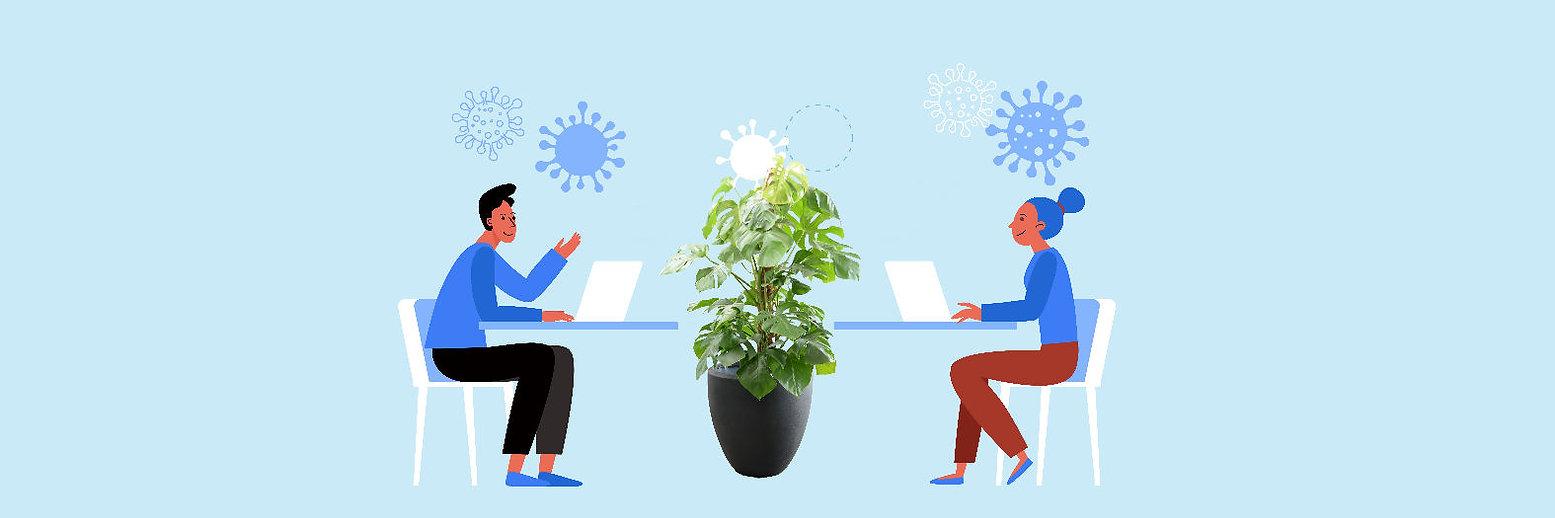 Social Distancing mit Pflanze 1.jpg