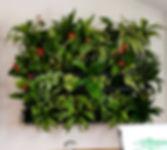 Wandbegrünung, Moos, Baumhaus, NextGen Living Walls sind Pflanzwände aus Echtpflanzen. Vertikale Begrünung, Begrünte Wände, Living Green Walls, Raumbegrünung Pflanzenpflege, Baumhaus, NextGen Living Wall bei BAUMHAUS, https://baumhaus.de, Wandbild, Living green, vertikale Begrünung, Nextgen Picture