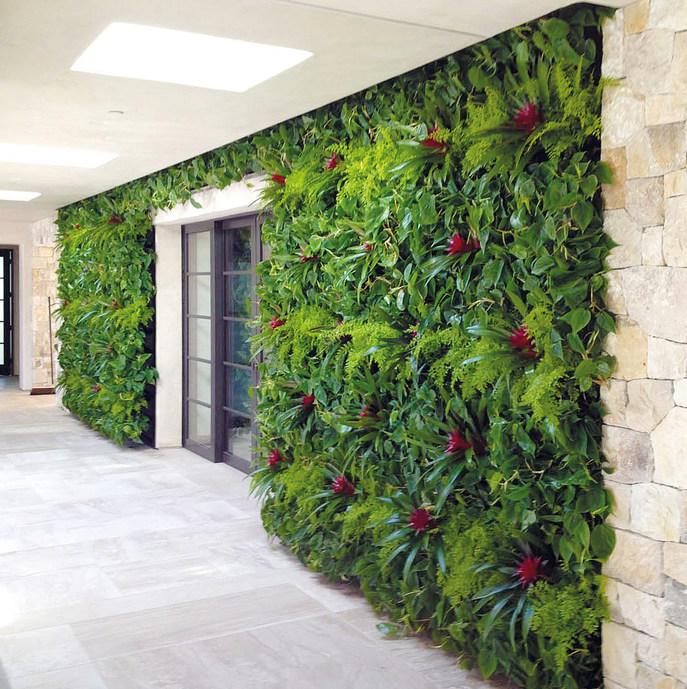 NextGen-Living-Walls Pflanzenwand Wandbegrünung