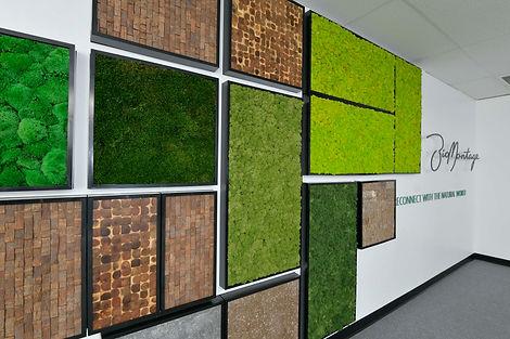 Moos, Mooswand, Moosbild, BioMontage-room_divider, Raumteiler, BioMontage Wandbild, NextGen Raumteiler, NextGen Living Wall bei BAUMHAUS, https://baumhaus.de, Wandbild, Living green, vertikale Begrünung, Baumhaus, Wandbegrünung, Moos, Baumhaus, NextGen Living Walls sind Pflanzwände aus Echtpflanzen. Vertikale Begrünung, Begrünte Wände, Living Green Walls, Raumbegrünung Pflanzenpflege, NextGen Living Wall bei BAUMHAUS, https://baumhaus.de, Wandbild, Living green, vertikale Begrünung, Nextgen Picture, Nextgen Picture