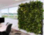 Raumbegrünung, Baumhaus, Wandbegrünung, Grüne Wände, Wandbegrünung, NextGen Living Wall, Begrünte Wände, vertikales Grün